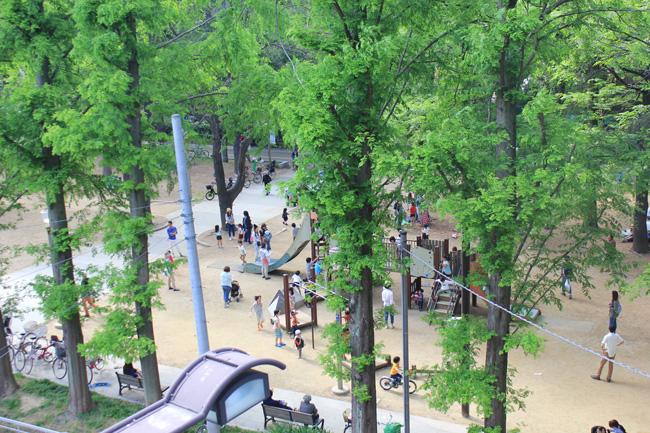 うつぼ公園のバラ祭 ~くらしとみどりフェスタ2014~